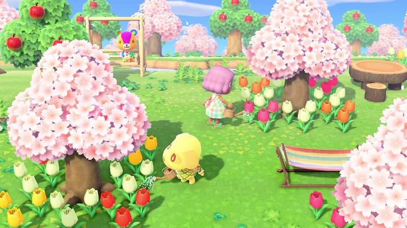桜の木の下で鼻に水をあげているシーン