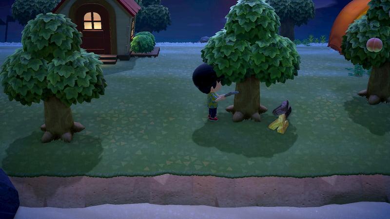 木を切るシーン