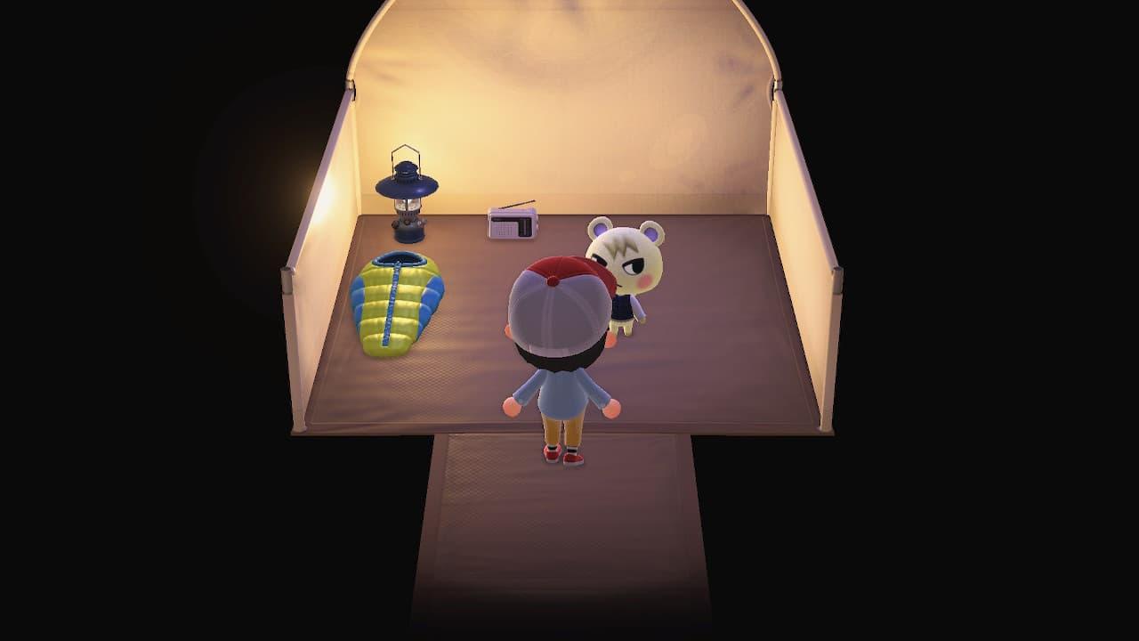 キャンプサイト初めてのお客さんはジュンでした